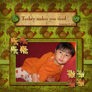 Tired turkey 08sm