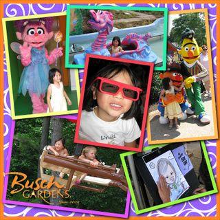 Busch2009 collagesm