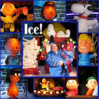 Ice2009SM