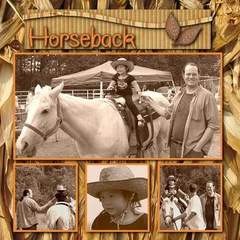 Horsebacksm